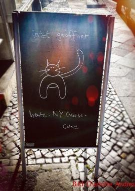Katzenmusikcafé